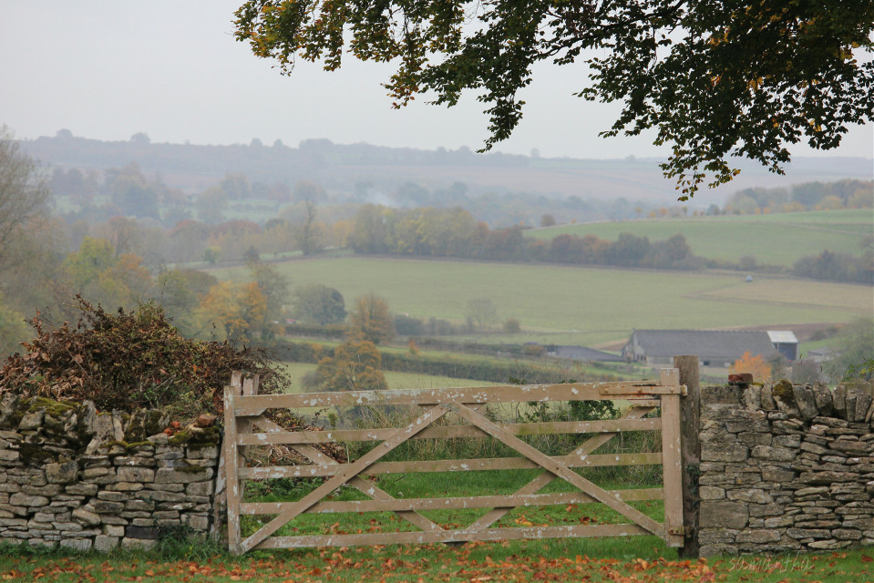#nature #photography #countryside #field #autumn #landscape #gate