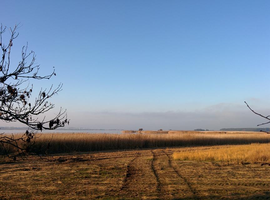 #FarAway #water #golden #photography   #nature #autumn #sky #rügen #nofilter  #landscape