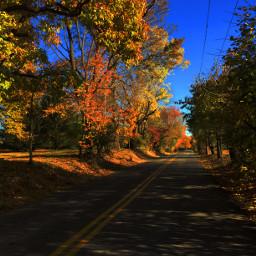 fall interesting art freetoedit photography