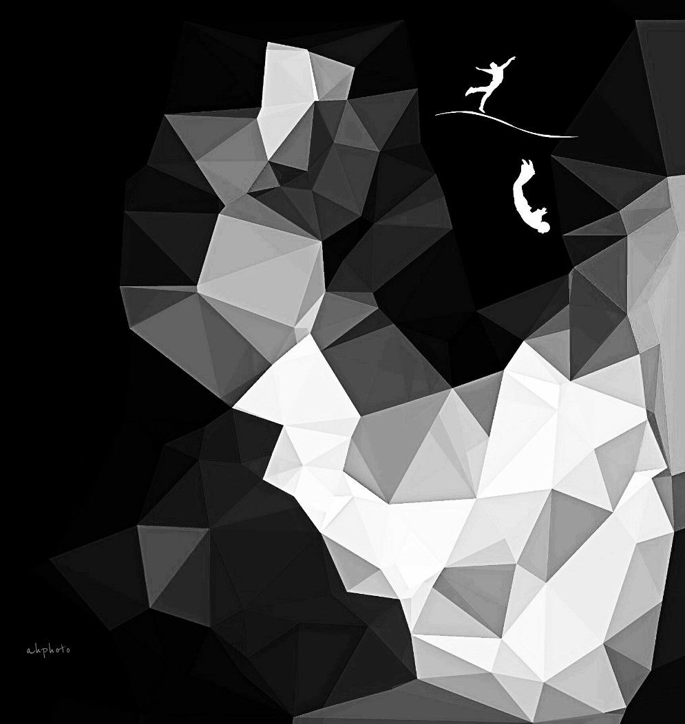 At one's own risk...   #polygoneffect  #shapes  #blackandwhite  #picsart  #clipart