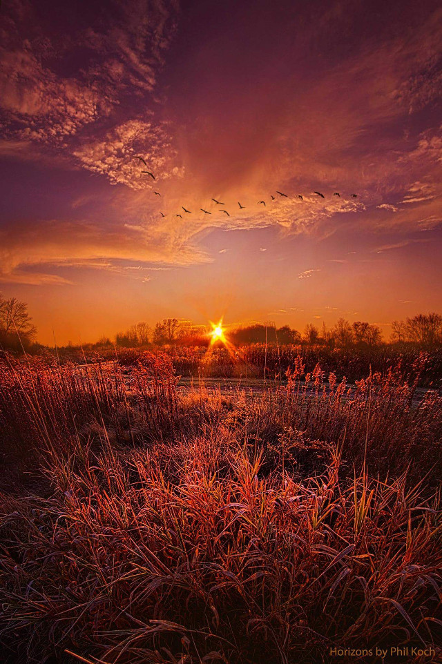 """""""To See and Feel Forever"""" - Horizons by  Phil Koch.   #fallcolors #orange #autumn #fall #landscape #sunset #beautiful #sunrise #nature #colorful #clouds #sky #peace #love #landscapephotography"""