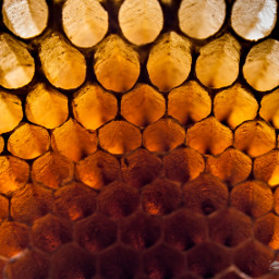 honeycomb background texture pattern color