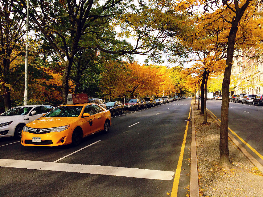 #fall #nyc