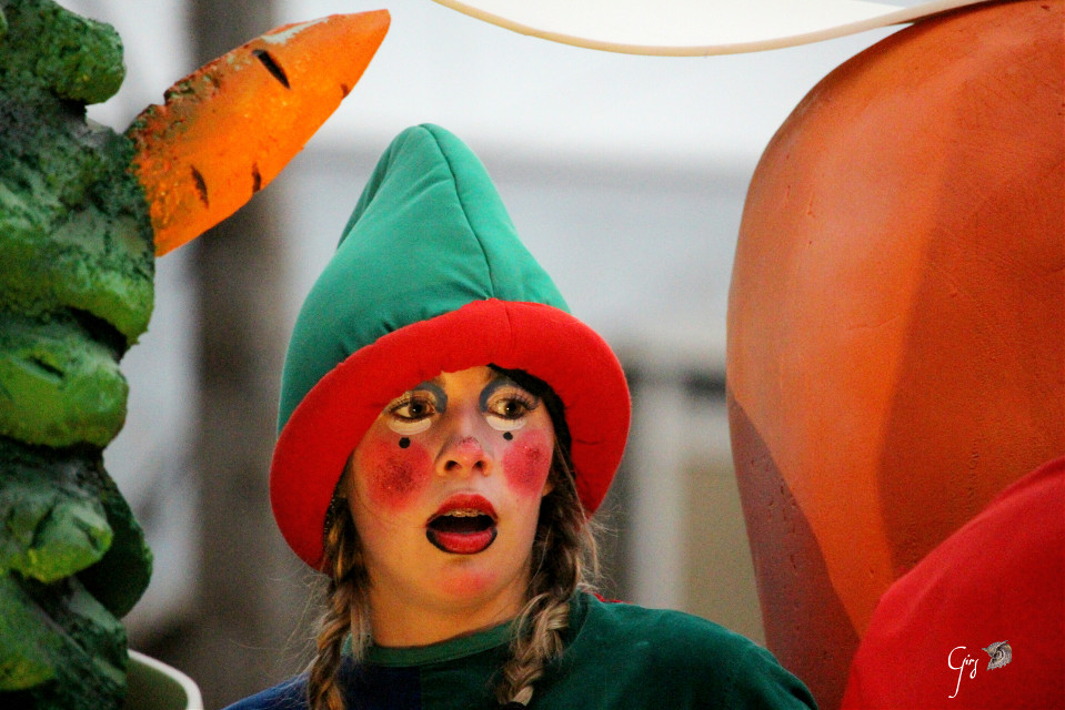 Good morning Good afternoon Good evening Good night For the daily inspiration  #redAndGreen   #parade  #elf  #portrait  #wppportrait