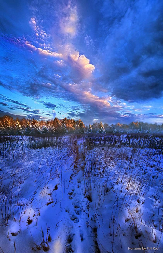 """""""Cool Blue North"""" - Horizons by Phil Koch.   #seasons #winter #snow #nature #photography #hdr #colorful #clouds #path #blue #sunrise"""