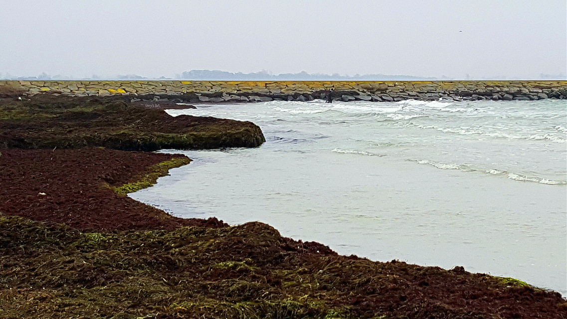 #sea #sweden