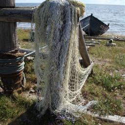 sea fishingnet nature