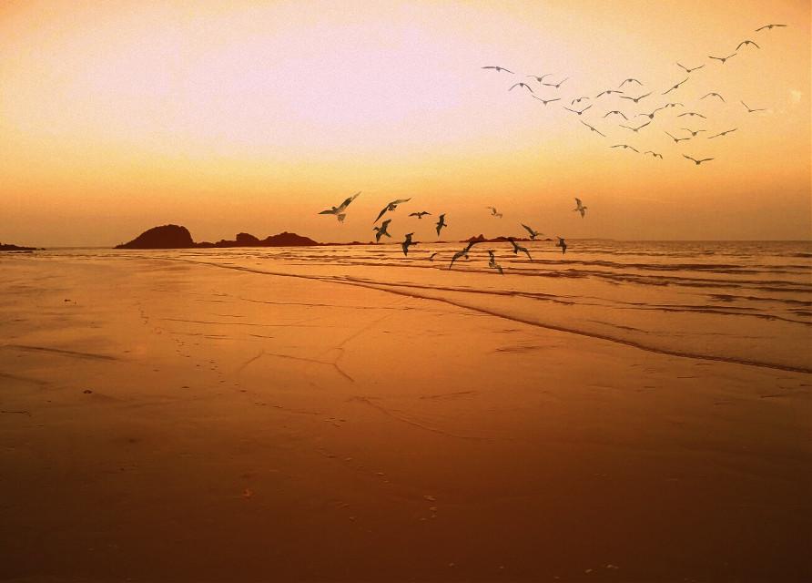 Good evening #beach #travel #photography #sky