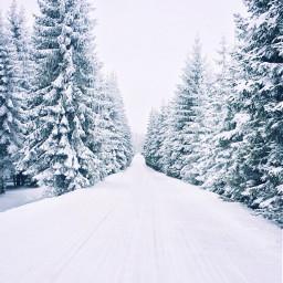 winter freetoedit snow crispeffect