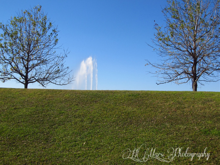#bluesky #interesting #photography #grass #hill #fountain #tree #nature #nofilter #noedit