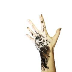fingerdrawings animal print hand panther