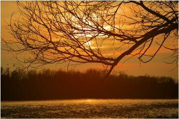 freetoedit sunset nature photography river