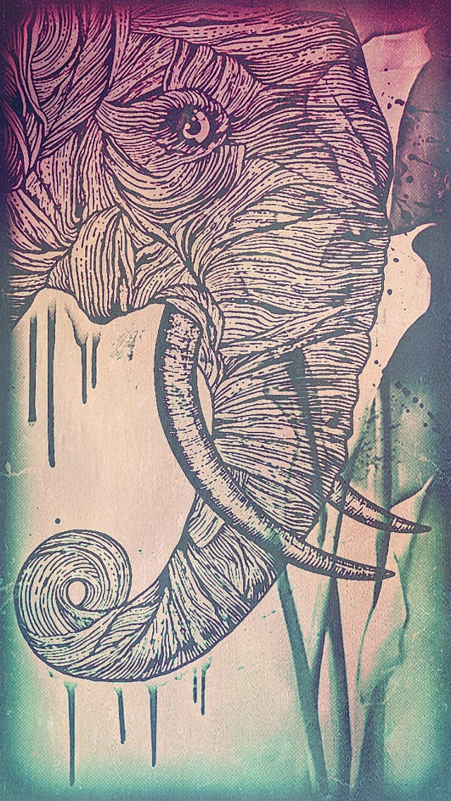 #bleistift  #petsandanimals #pencilart  #combi  #elefant  #flower