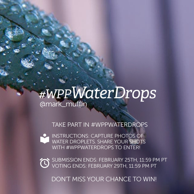 Water drops can create a scene of warmth or a scene of gloom. It's all about the way you photograph them. For this Weekly Photo Project, we want to see which one you decide to create. Share your photos with #wppWaterDrops! (Banner image by @mark_muffin)