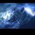 @thewolfpack2143