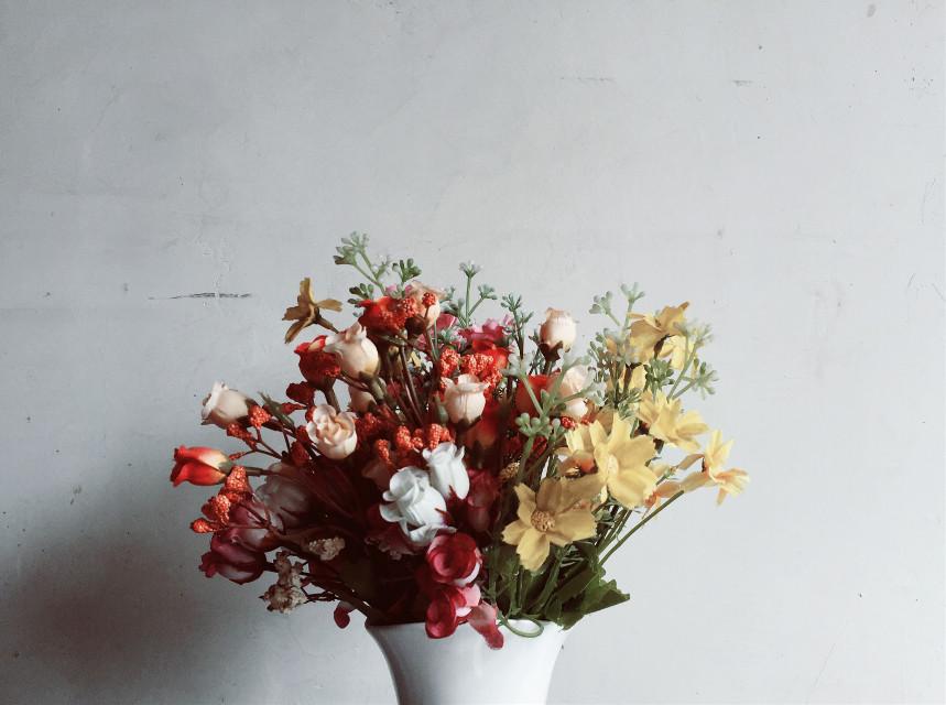 #FreeToEdit #flowers #iphonephotography #white