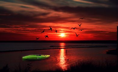 freetoedit nature photography emotions sunset