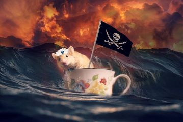 mouse pirate art interesting editing