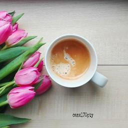 morningcoffee tulips feelinghappy haveagreatday