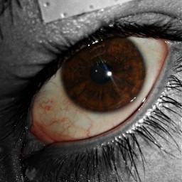 eye blackandwhite color cool