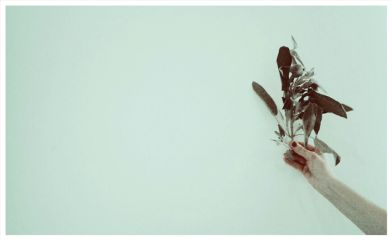 freetoedit spring vintageivoryeffect negativespace hand