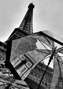 wpprain rain umbrella blackandwhite eiffeltower