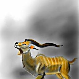wdpzooanimals drawing art fantasy digitaldrawing