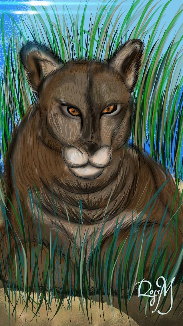 #wdpzooanimals #animals  #drawing  #digitaldrawing  #nature  PUMA