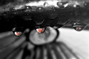 raindrops reflections blackandwhite