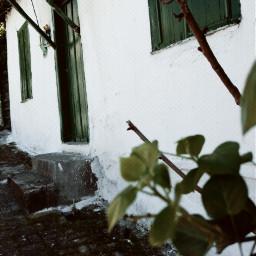 freetoedit nature oldphoto photography travel
