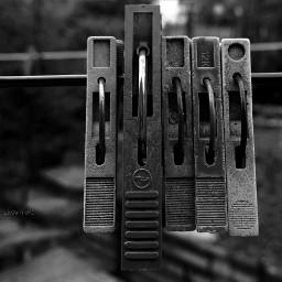 photography blackandwhite simple closeup clothespins